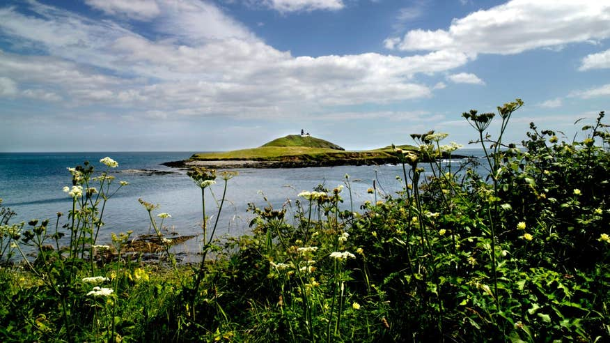 The Ballycotton Cliff Walk is full of amazing views throughout.