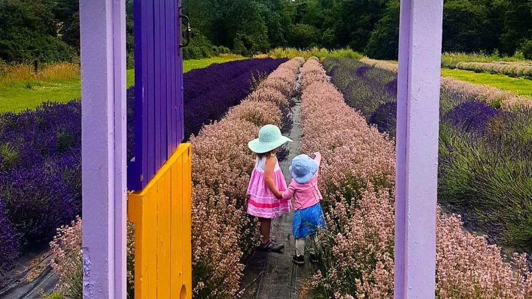 Two little girls looking out in front of a doorway at Wexford Lavender Farm