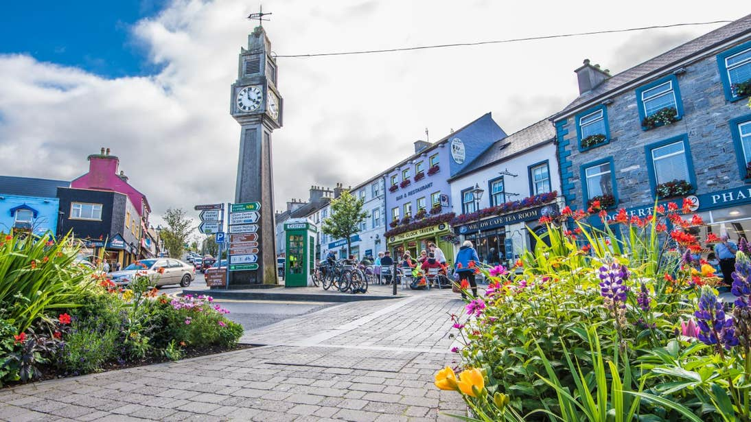 Bright flowers in a square in Westport, Mayo