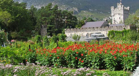 Glenveagh Castle surround by trees and colourful flowers