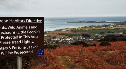 Image of a sign informing people that the Leprechauns are protected erected on a hill overlooking Carlingford Lough