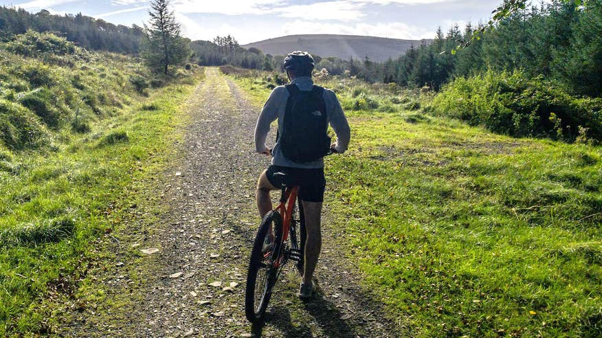 Try mountain biking during your stay in the Slieve Bloom Mountains.