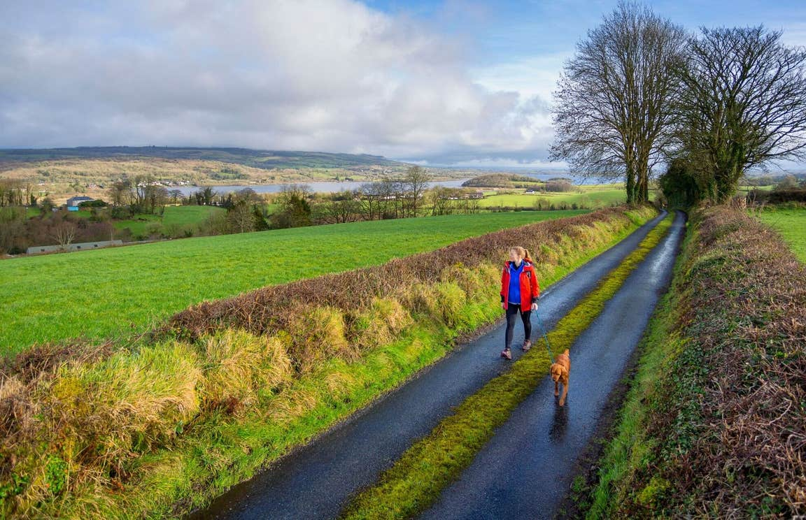 A woman walking a dog along a quiet country lane
