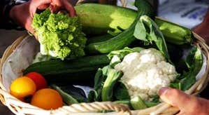 Image of organic vegetables