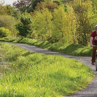 A family of five cycling along the Royal Canal Greenway path