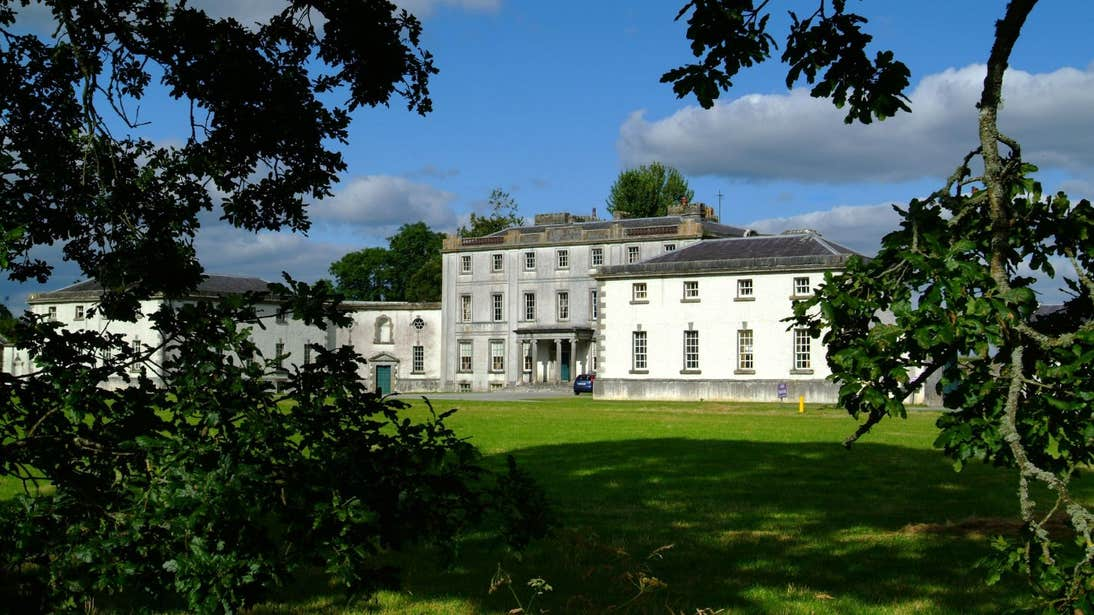 Trees in front of Strokestown House, County Roscommon