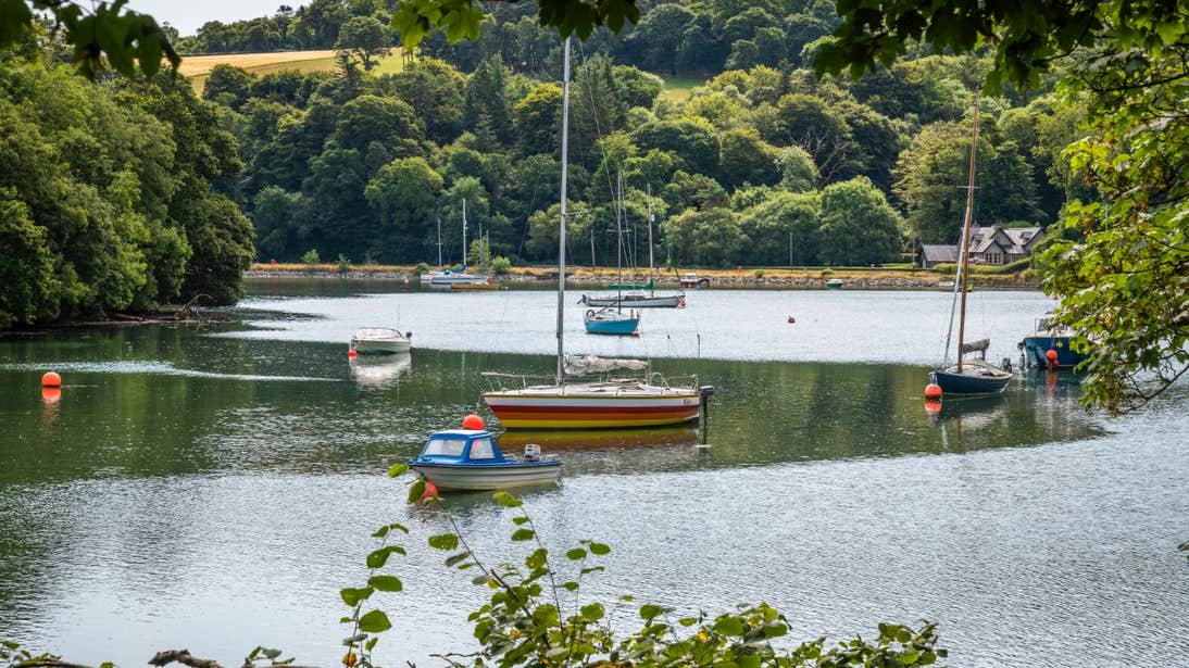 Views of trees and boats bobbing in the still waters along the Carrigaline Crosshaven walk