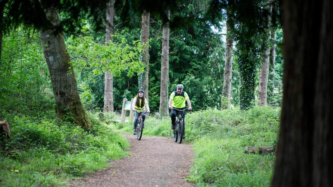 Two people on mountain bikes cycling through Portumna Forest Park in Galway