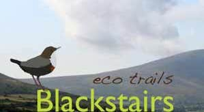 Blackstairs -headerwithlogo.jpg