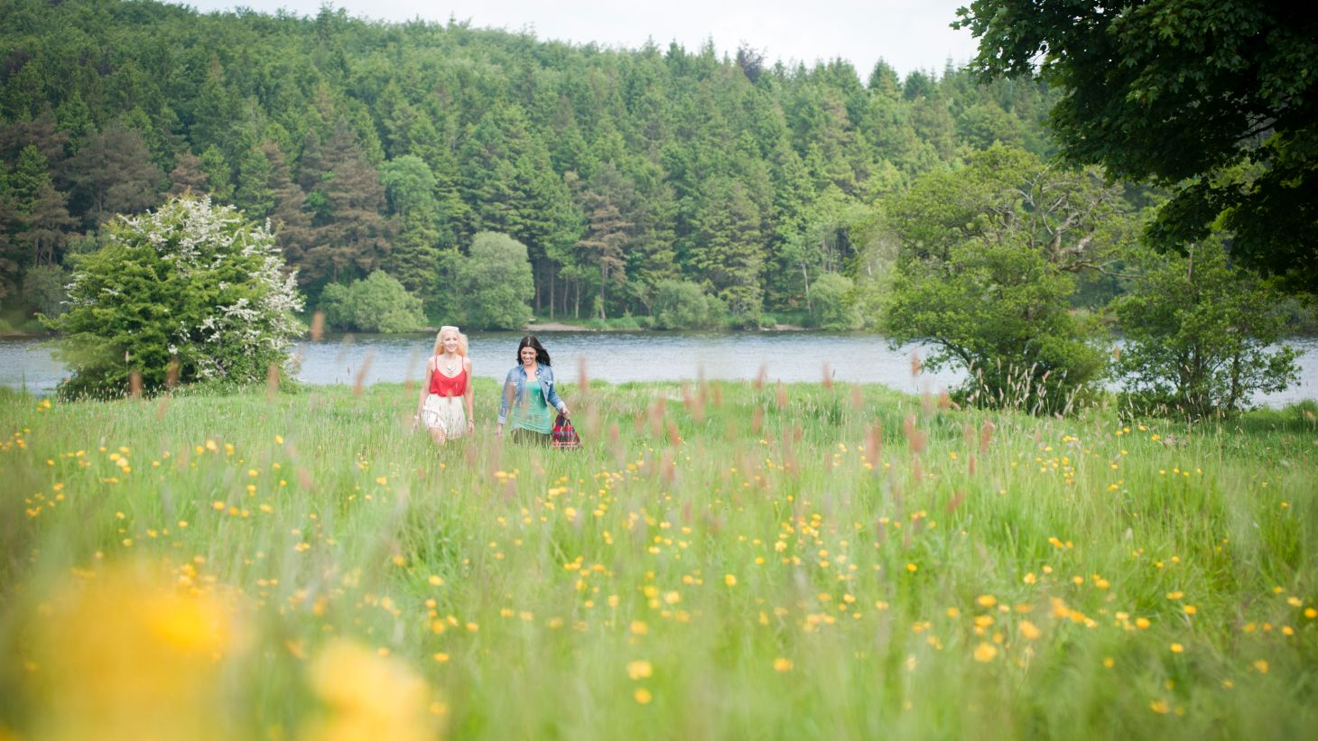 Take a scenic stroll along Lough Muckno.