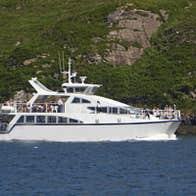 Killary Fjord Boat Tours two