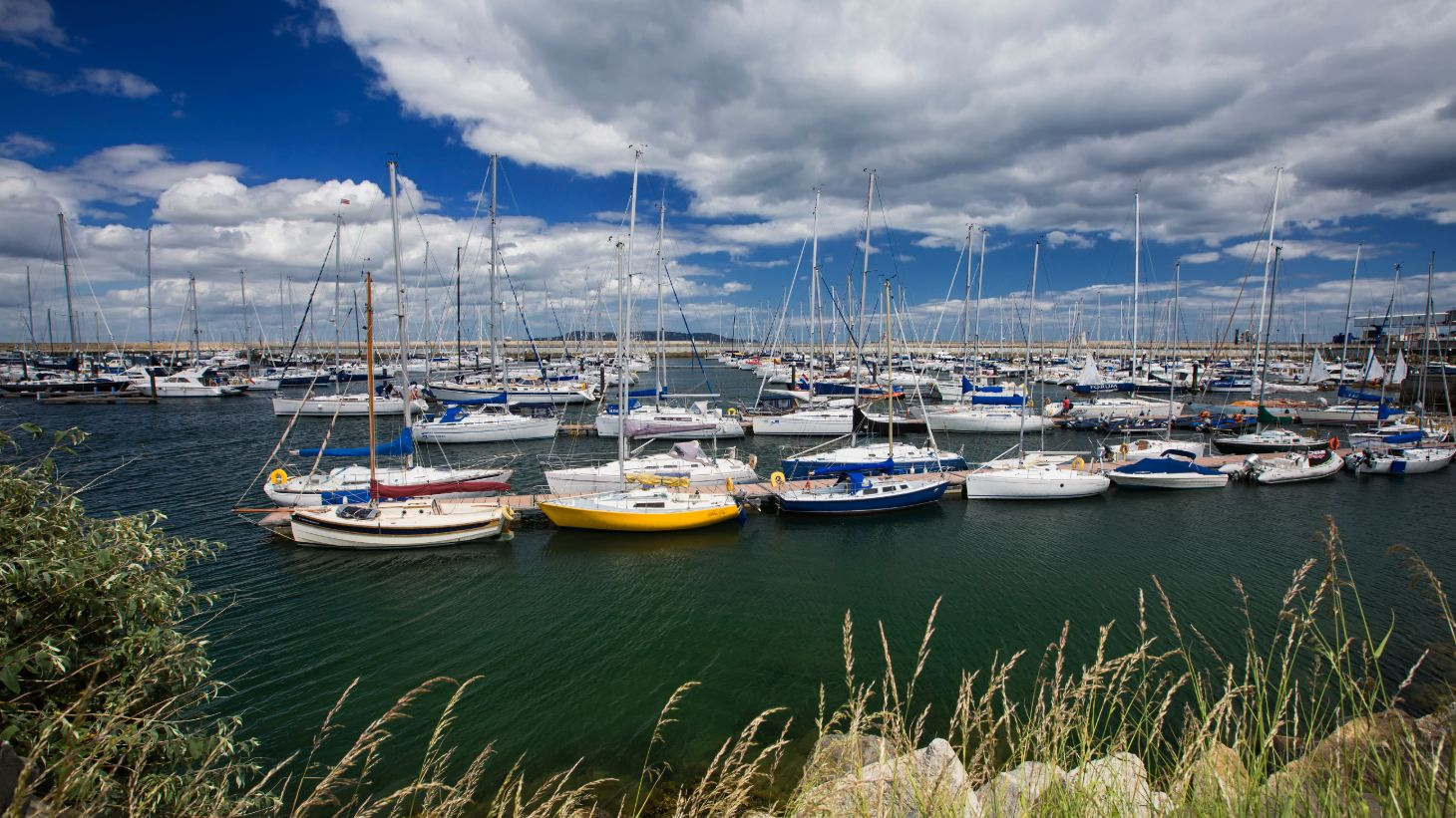 Watch boats bobbing along at Dún Laoghaire Harbour.