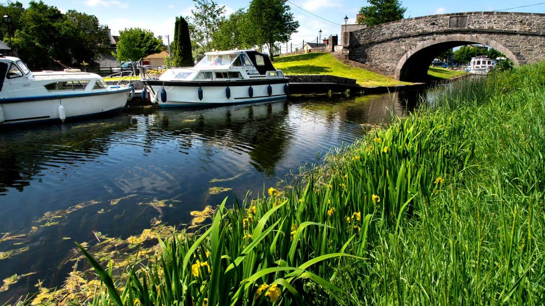 Boats passing under an arched bridge on the River Shannon with grass and flowers in the background