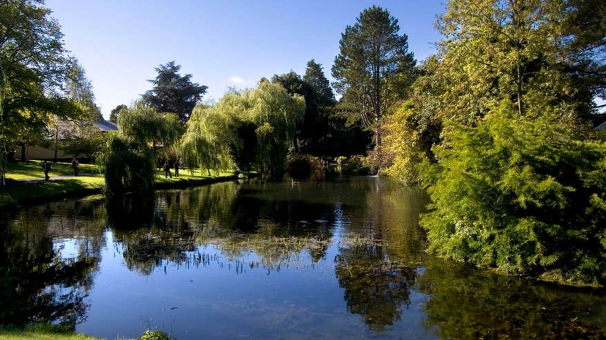 Bask in the beautiful scenery of The Irish National Stud and Gardens.