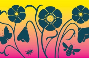 Springtime Awakening: Online Early Years Workshop