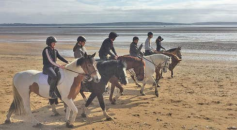 Pallas Equestrian group of six riders on a sandy beach