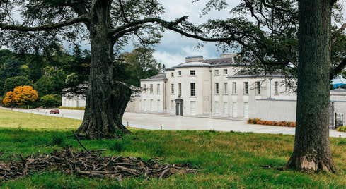 Majestic trees and shrubs outside magnificent Mount Congreve Estate, Waterford