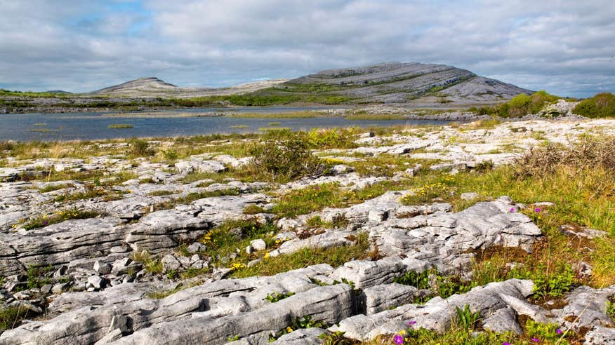 See the incredible landscapes of the Burren.
