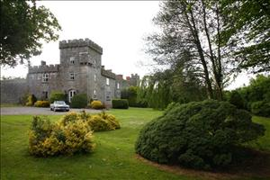 Fanningstown Castle