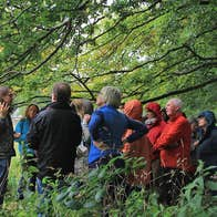 A tour group on a guided eco trail in the woods