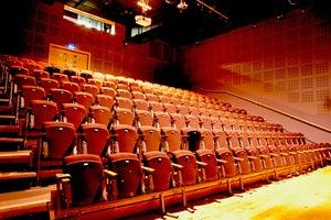 dlr Mill Theatre