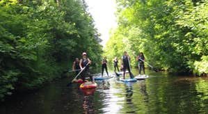 Group of people out on the water stand-up paddling