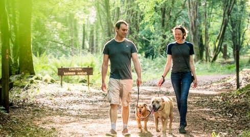 Portumna Forest Park - Forest Friendly Walking Trail