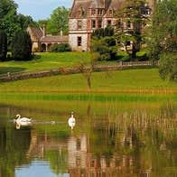 Swans on the lake at Castle Leslie Estate Glaslough County Monaghan