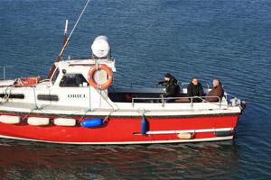 Island Ferries