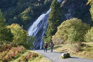 Image of Powerscourt Waterfall