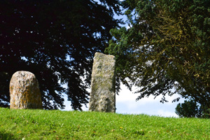 John's Tours of Ireland
