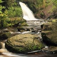 Silver River Nature Loop Walk