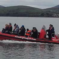 Image of Dingle Dolphin Boat Tours