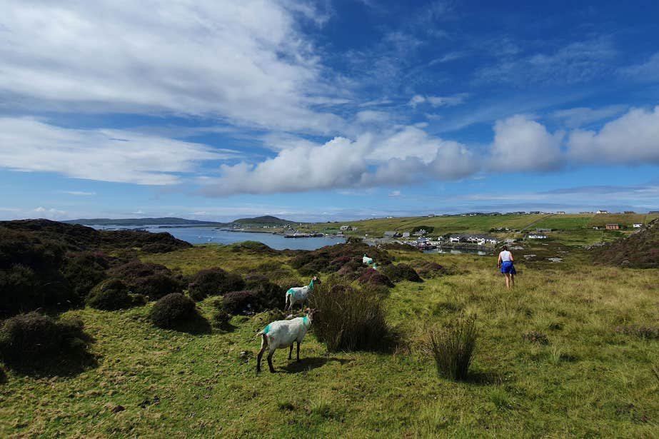 Person walking in Knock Hill, Inishbofin, Co Galway