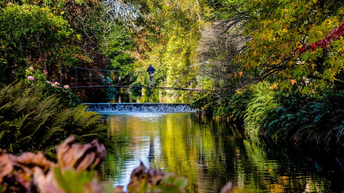 A person standing on a bridge surrounded by rich greenery at Mount Usher Gardens, Co. Wicklow