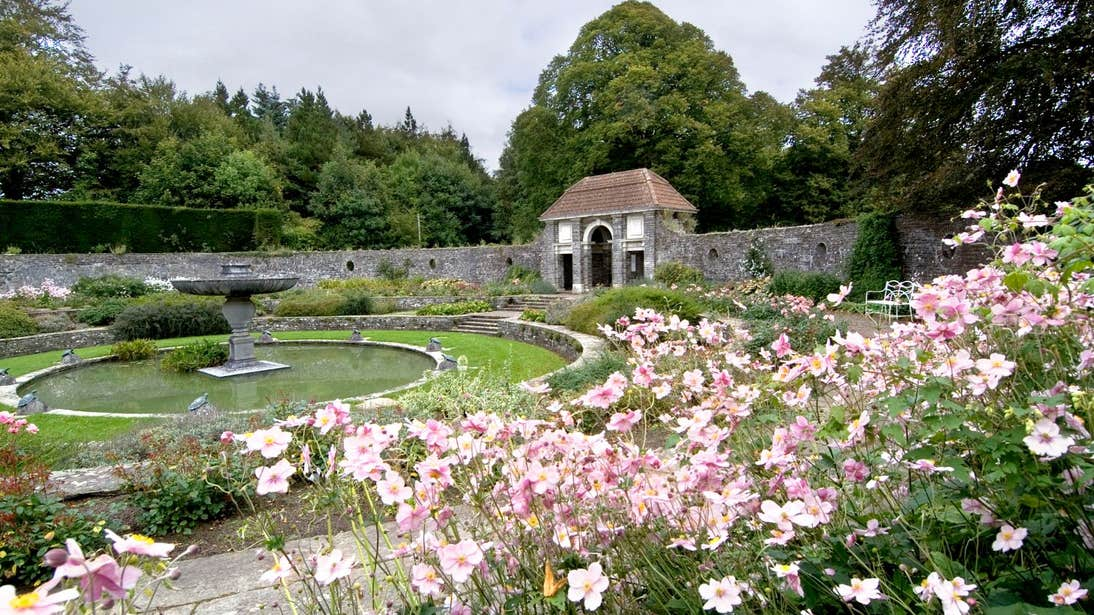 Pink flowers in a garden by a fountain in Haywood Gardens