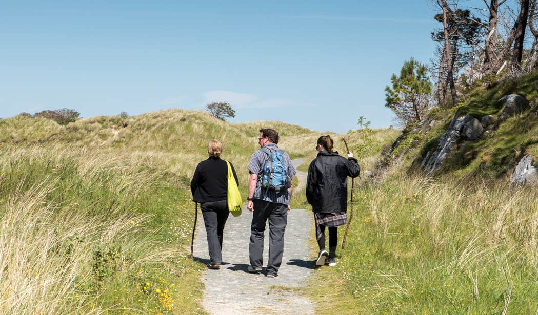 Three people hiking through Ards Forest Park in Donegal on a sunny day.