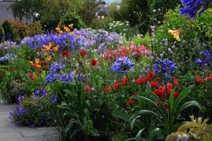 Arbutus Garden Tours