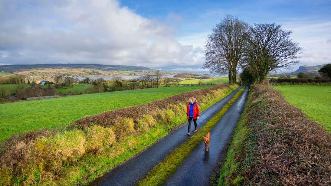 A woman and a dog walking on peaceful country lanes on the Cavan Way.