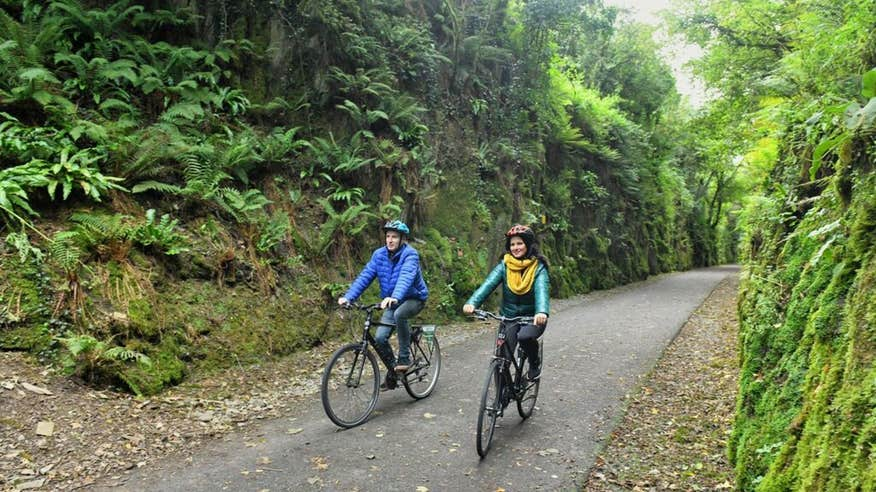 Surround yourself in nature on the Waterford Greenway