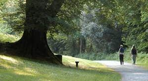 Dun a Rí Forest Park