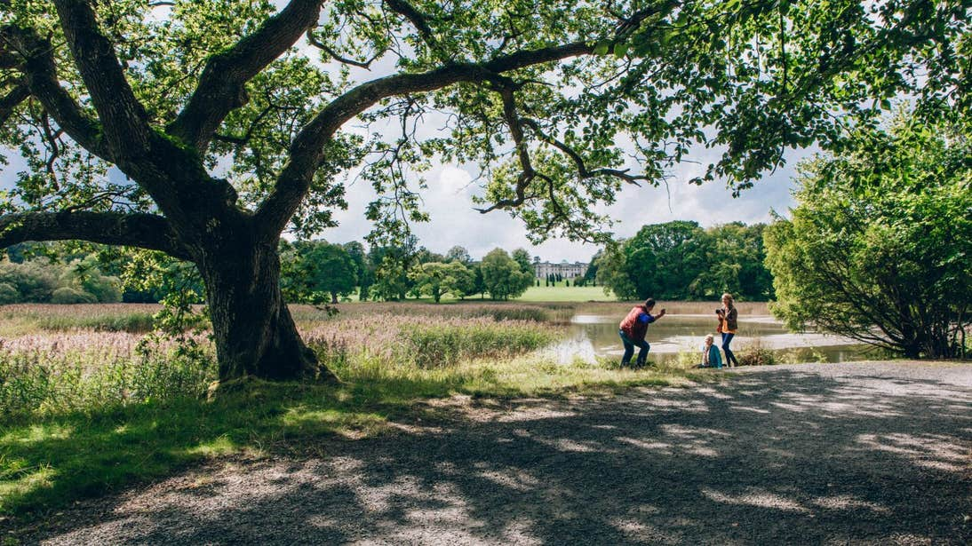 Two people under a large tree beside Lake at Emo Court in County Laois