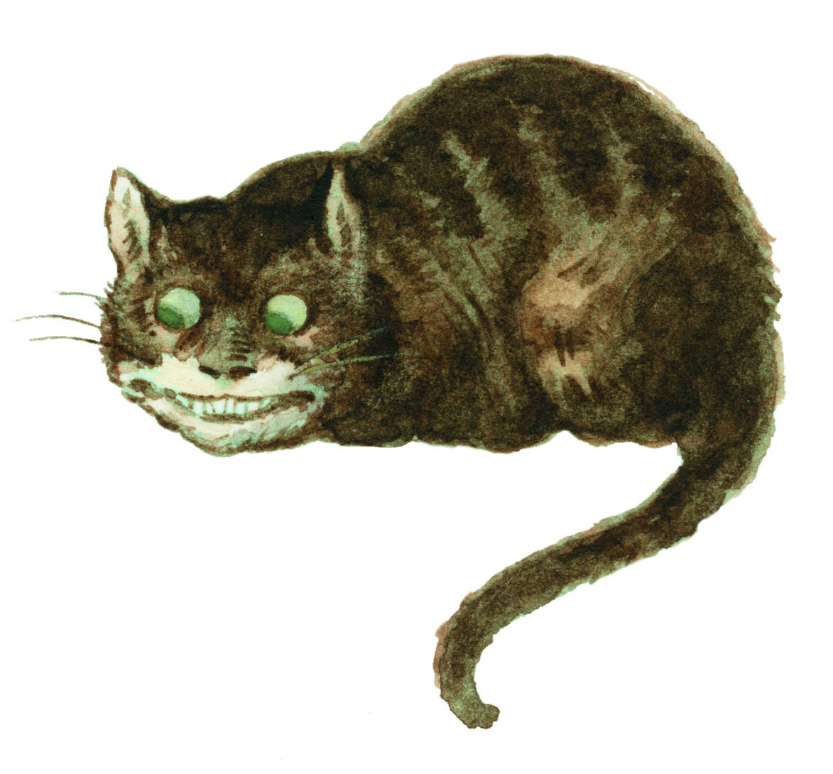 Illustration of the grinning Cheshire Cat from Alice in Wonderland.