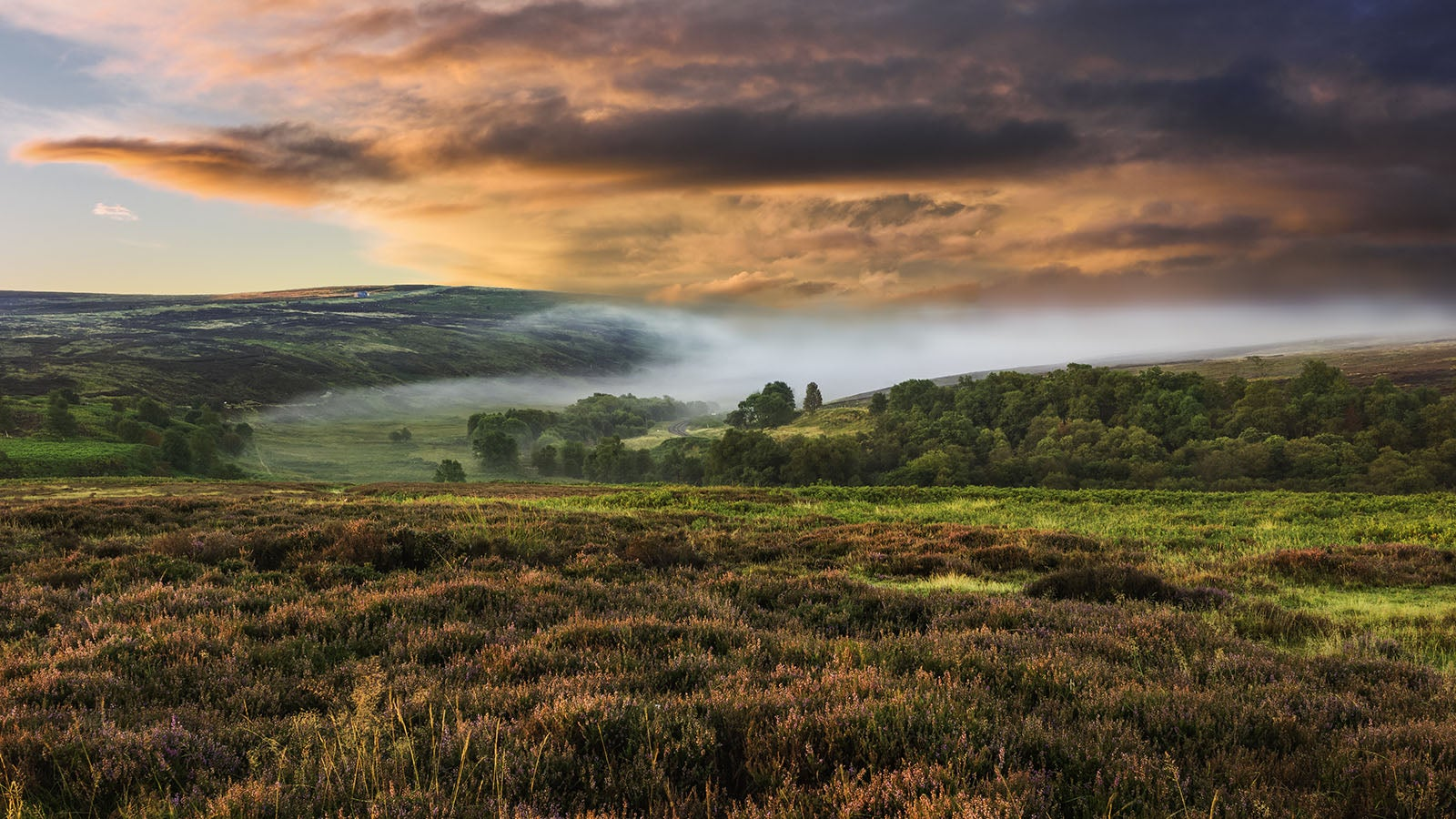 Photograph of the Yorkshire Moors
