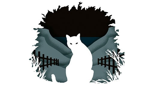 Cut out from Emily St John Mandel's The Singer's Gun depicting a white cat with grey fields and black fences behind it