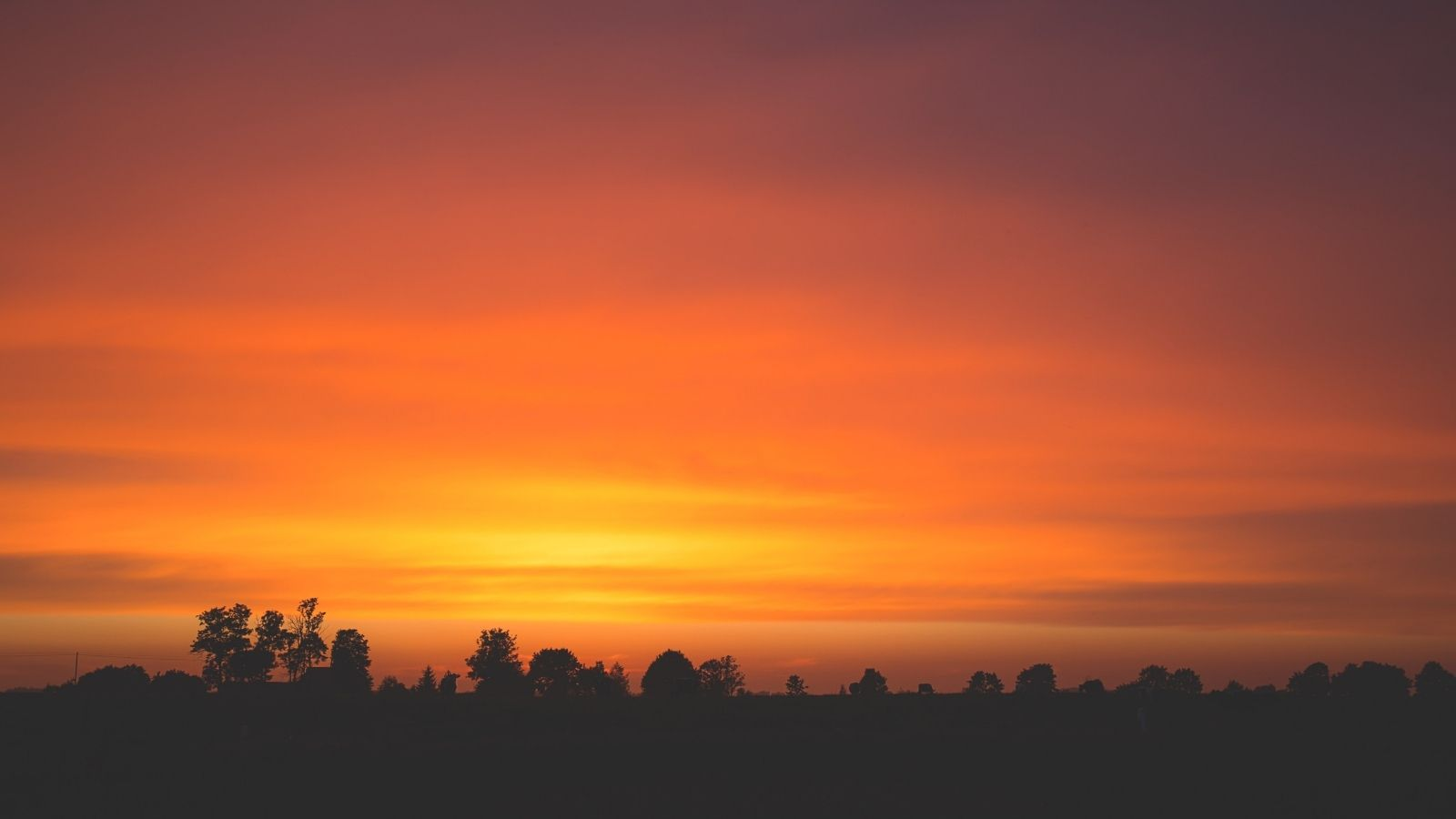 Late Summer Sunset with silhouette of trees