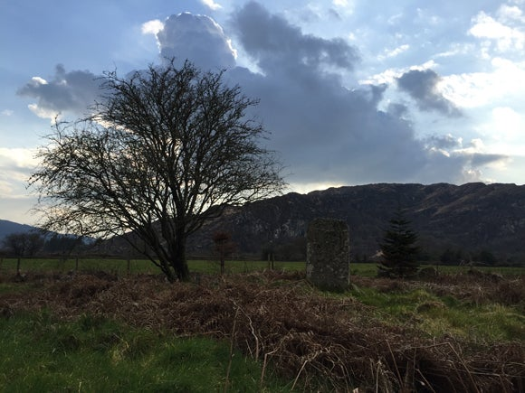 A tree, bare of leaves, next to a rectangular pile of ancient bricks in a field, with mountains i the background and a blue sky - the sunlight behind clouds