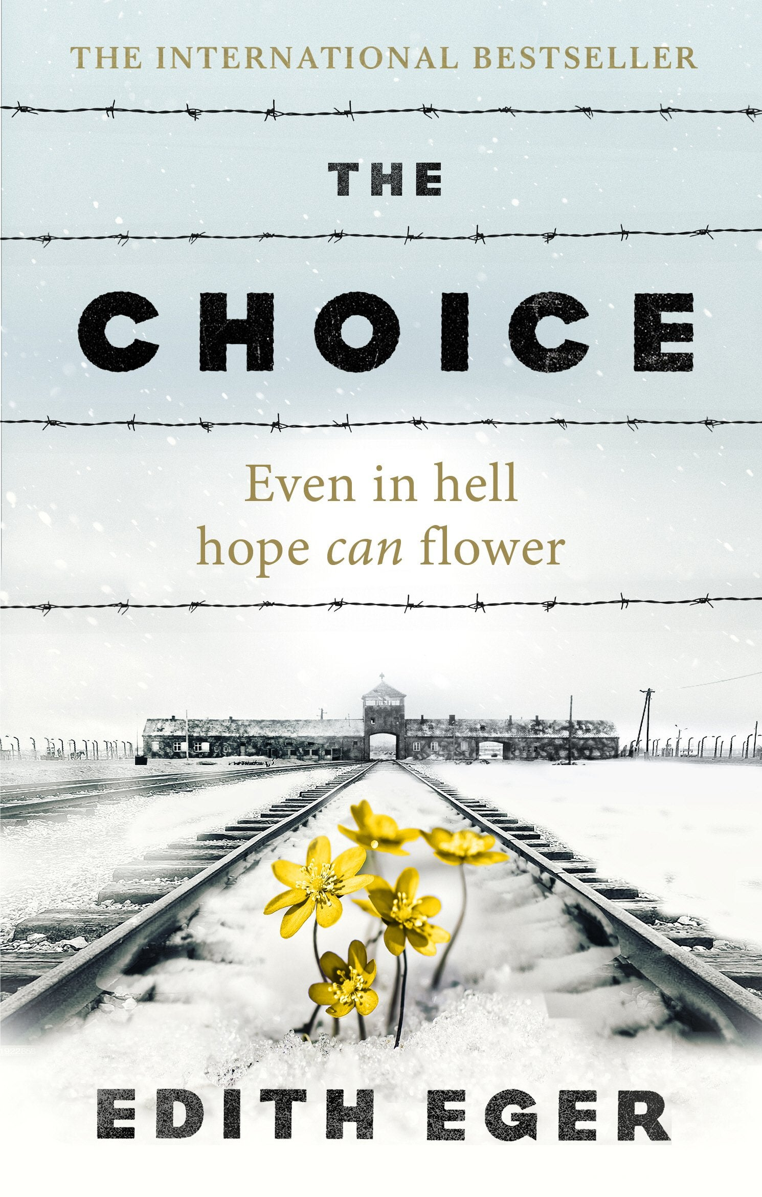 Book cover for The Choice