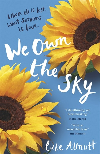 Book cover for We Own The Sky