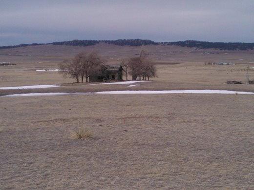 An abandoned homestead
